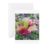 Huckleberries Greeting Cards (Pk of 20)