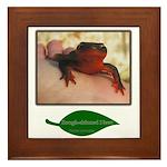Rough Skinned Newt Salamander Framed Tile