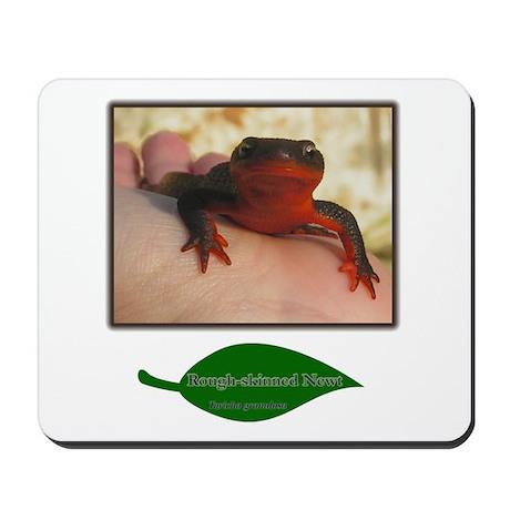 Rough Skinned Newt Salamander Mousepad