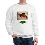 Rough Skinned Newt Salamander Sweatshirt