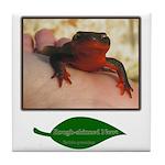 Rough Skinned Newt Salamander Tile Coaster