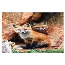 Fox Cubs in Hollow Tree Poster