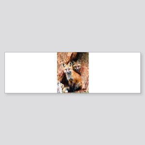 Fox Cubs in Hollow Tree Bumper Sticker