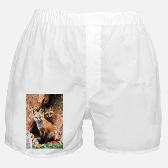 Fox Cubs in Hollow Tree Boxer Shorts