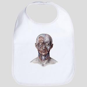 Human Anatomy Face Bib
