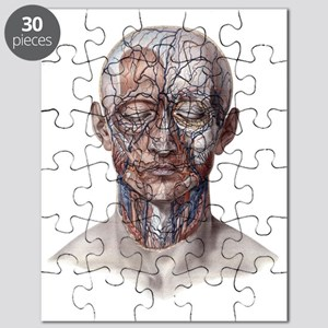 Human Anatomy Face Puzzle