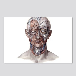 Human Anatomy Face Postcards (Package of 8)