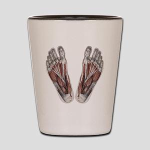 Vintage Human Anatomy Feet Shot Glass