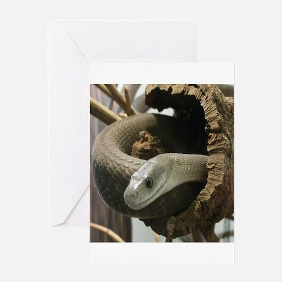 Black Mamba Snake Greeting Cards