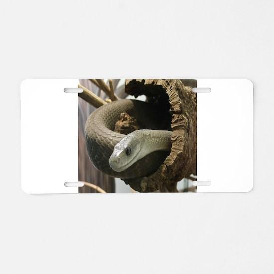 Black Mamba Snake Aluminum License Plate
