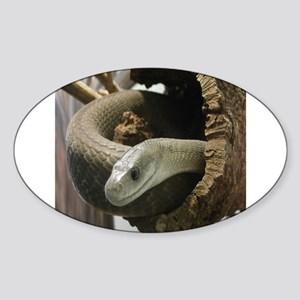 Black Mamba Snake Sticker