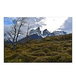 Torres Del Paine National Park Postcards (Package