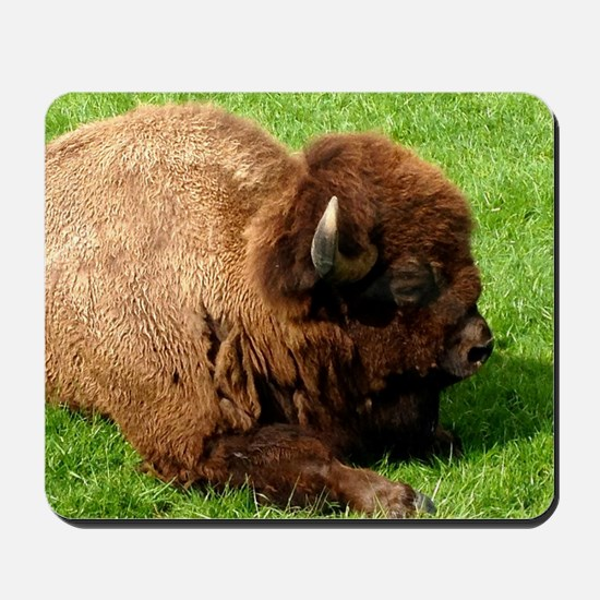 Northwest Buffalo Mousepad