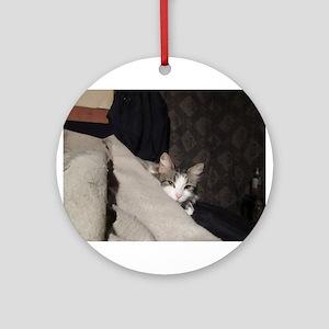 Flicker In Bed Ornament (Round)