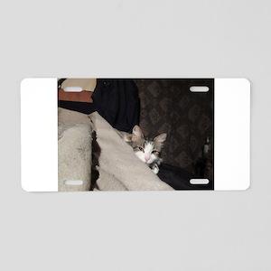 Flicker In Bed Aluminum License Plate