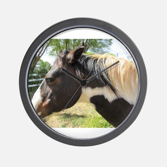 A Gorgeous Paint Horse Wall Clock