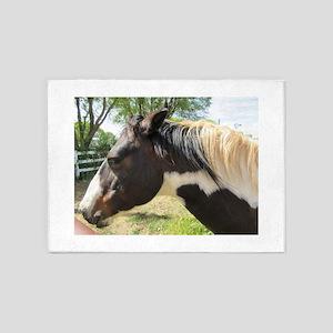 A Gorgeous Paint Horse 5'x7'Area Rug