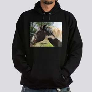A Gorgeous Paint Horse Hoodie