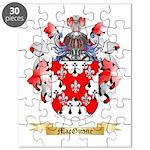 MacGuane Puzzle