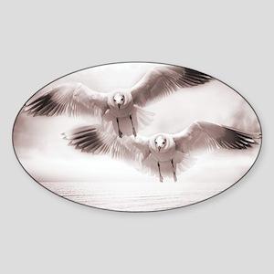 Gull Sticker (Oval)