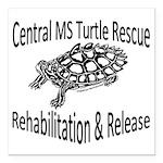 CMTR Map Turtle Square Car Magnet 3