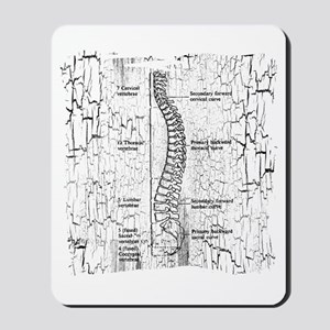 """Crackle Back/D.C."" Mousepad"
