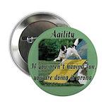Agility Fun! 2.25