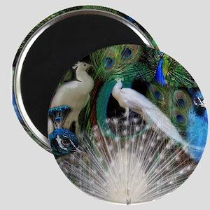 Happy Peacocks Magnet