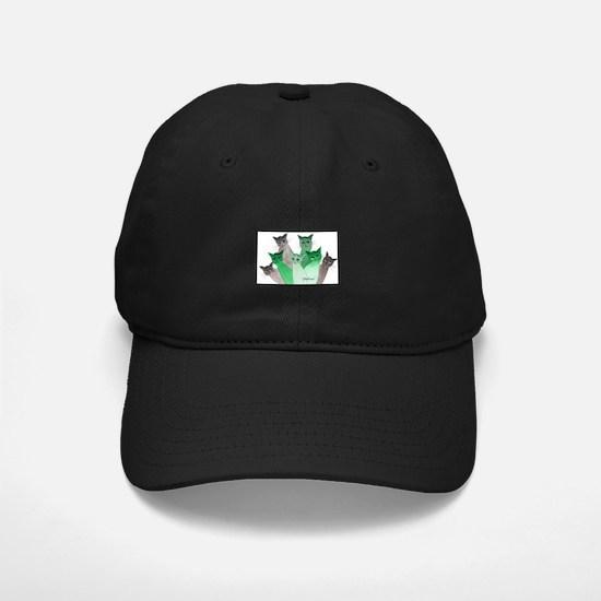 Deschutes Stray Cats Baseball Hat