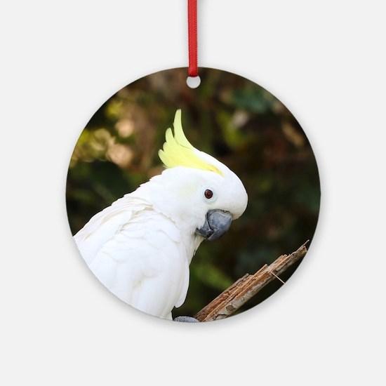 Unique Parakeets Round Ornament