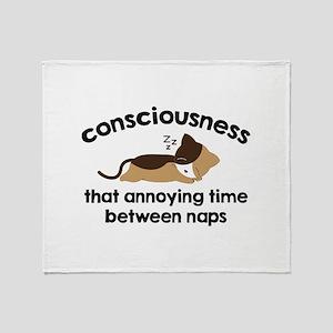 Consciousness Stadium Blanket