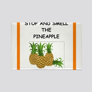 pineapple Magnets