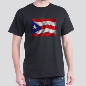 Puerto Rico Flag (bright) T-Shirt
