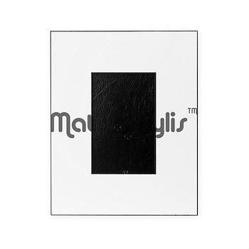 logo-large-transparent Picture Frame