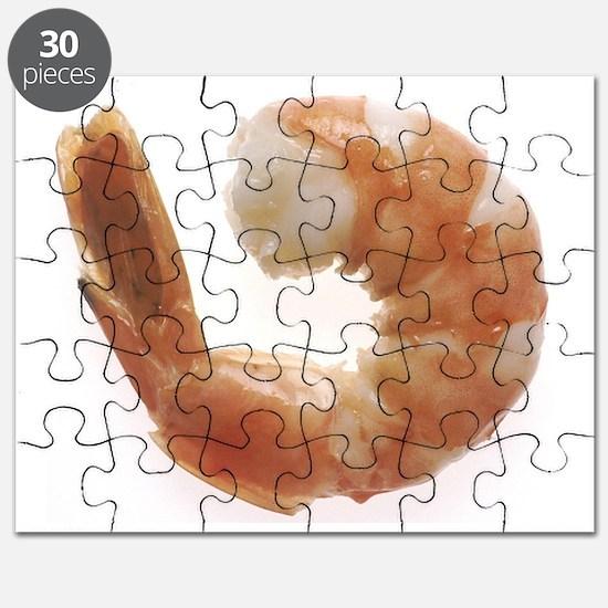 Cooked Shrimp Puzzle