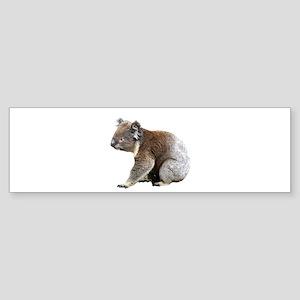 Aussie Koala Bear Cutout Photo Bumper Sticker