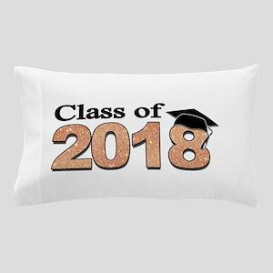 Class of 2018 Glitter Pillow Case