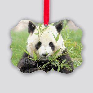 Giant panda Picture Ornament