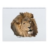 Defenders of wildlife Calendars