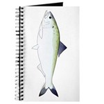 American Shad Journal