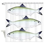 American Shad Shower Curtain
