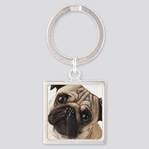 Curious Pug Square Keychain