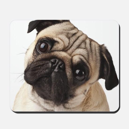 Curious Pug Mousepad