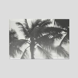 BW Palms Magnets