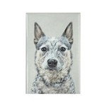 Australian Cattle Dog Rectangle Magnet (10 pack)