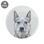 Australian Cattle Dog 3.5