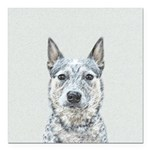Australian Cattle Dog Square Car Magnet 3