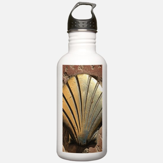 Gold El Camino shell s Water Bottle