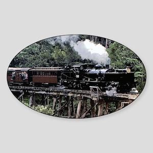 Heritage Narrow Gauge Steam Sticker