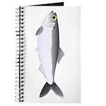 Alewife herring v2 Journal